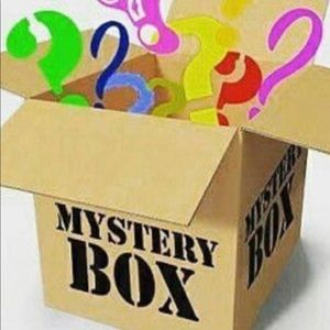 Designer bags mystery box!
